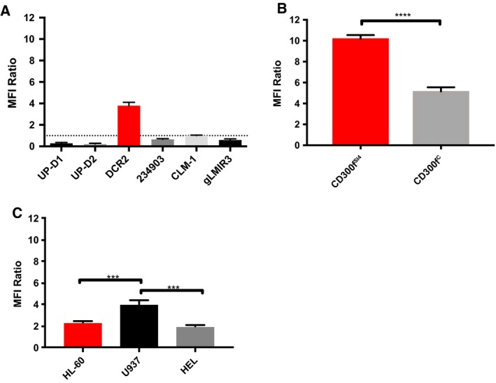 Cross‐blocking studies with  DCR ‐2 and  UP ‐D2. Cells were incubated at the saturation point of a primary antibody or an equal concentration of an isotype control and then stained with  UP ‐D2  PE  at 80ng·mL −1 . The  MFI  ratio is the comparison between primary antibody and isotype control groups. (A) The change in  UP ‐D2  PE  binding to  CD 300f C CHO  transfectants with different primary antibody staining. (B) Difference in  UP ‐D2 binding to  CD 300f SI 4 ‐ and  CD 300f C ‐transfected  CHO  cells, which were incubated with a saturating amount of  DCR ‐2 or isotype control prior to  UP ‐D2  PE . (C) Difference in  UP ‐D2 binding to  AML  cell lines, which were incubated with a saturating amount of  DCR ‐2 or isotype control prior to  UP ‐D2  PE . Error bars represent  SEM . Panel B was analyzed using a t‐test. Panel C was analyzed using a one‐way  ANOVA  with multiple comparisons between groups. *** P