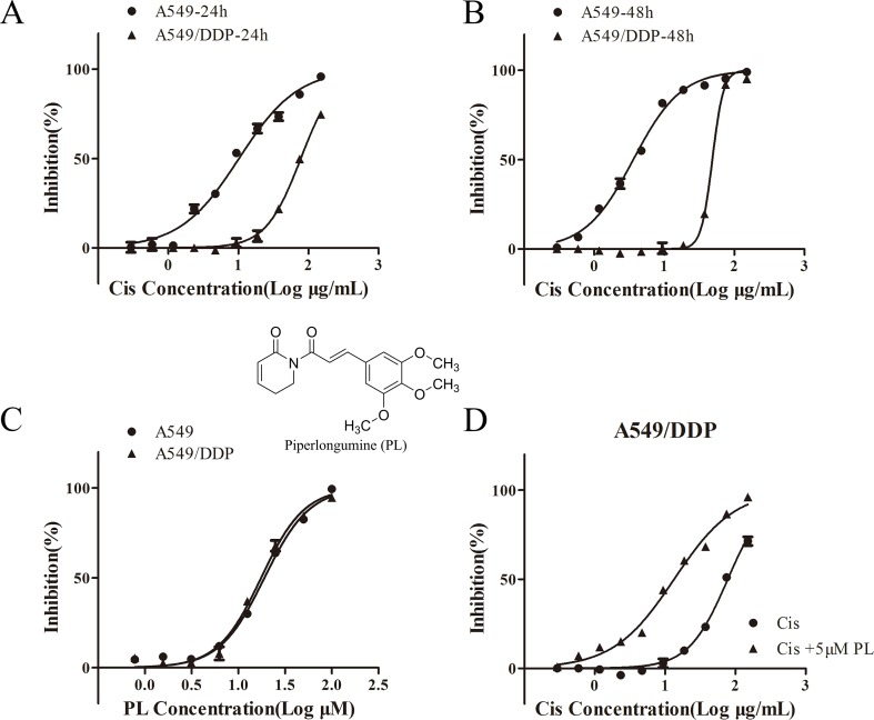 Piperlongumine (PL) enhances the chemosensitivity of A549/Cis cells to cisplatin. A549 and A549/Cis cells were treated with various concentrations of cisplatin at 24 h (A) or 48 h (B) , or treated with various concentrations of PL at 24 h (C) . (D) A549/Cis cells were treated with cisplatin alone or in combination with PL at 24 h and the cell viability was measured by an MTT assay. DMSO was used as the negative control. Five replicates were made for each concentration of the drugs. The results are expressed as the mean ± SD (n = 3) of three independent experiments.