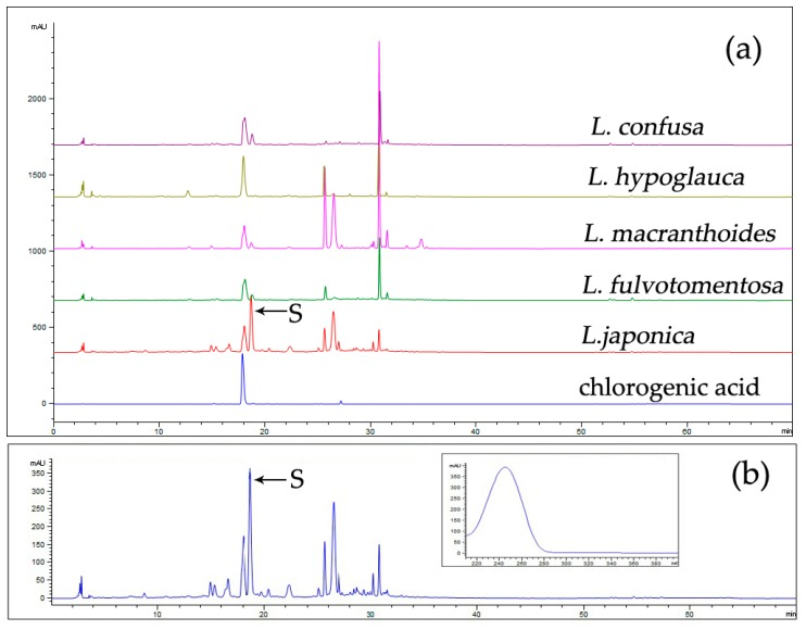The overlapping fingerprints of L. japonicae flos (LJF) and LF ( a ) and the UV spectrum of compound S in LJF ( b ). Column: An Agilent ZORBAX XDB C18 (4.6 × 250 mm, 5 μm) column; column temperature, 30 °C; mobile phases: phosphoric acid solution (A) and acetonitrile (B) (5–15% B at 0–20 min, 15–55% B at 20–45 min, and 55–100% B at 45–60 min); flow rate: 1.0 mL/min; detection wavelength: 254 nm; injection volume: 10 µL.