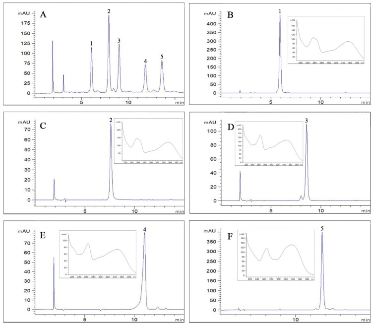 ( A ) HPLC analysis of the crude sample; ( B – F ) HPLC chromatograms and UV spectra of compounds 1 – 5 . Column: C18 column (Waters symmetry, 5 μm, 4.6 mm × 250 mm, i.d.); mobile phase: acetonitrile ( A ) 0.1% aqueous solution of formic acid (B) (0–15 min, 21:79, v / v ); flow rate: 1.0 mL/min; detection wavelength: 254 nm; column temperature: 25 °C.