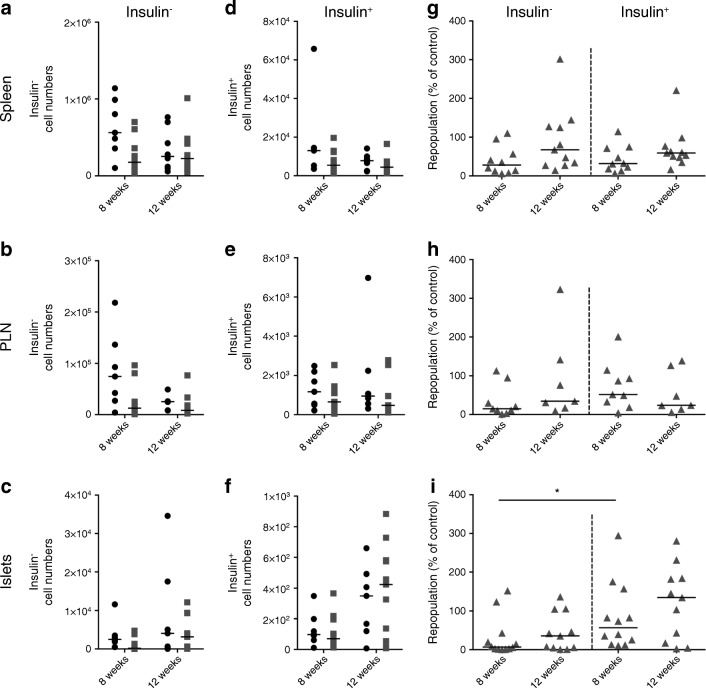 Anti-insulin B cells repopulate pancreatic islets more rapidly than insulin-negative B cells after anti-CD20 treatment. Groups of VH125.hCD20/NOD mice, aged 6–8 weeks old, were injected with 2H7 anti-CD20 or IgG isotype control. Spleen, PLNs and pancreatic islets were analysed for insulin-positive and insulin-negative B cells at 8 weeks and 12 weeks post depletion by flow cytometry. ( a – f ) No. of cells from IgG control-treated (black circles) and 2H7-treated (grey squares) mice for insulin-negative B cells ( a – c ) and insulin-positive B cells ( d – f ) from spleen ( a , d ) PLNs ( b , e ) and islets ( c , f ). ( g – i ) Percentage of B cells repopulated at 8 and 12 weeks after treatment from spleen ( g ), PLNs ( h ) and islets ( i ) of mice shown in ( a – f ). Percentages were calculated as individual numbers from each 2H7-treated mouse / mean number from all IgG control antibody-treated mice. Horizontal lines represent the median value. Data represent three independent experiments. At 8 weeks, n = 7 (spleen), n = 7 (PLNs) and n = 9 (islets) for control IgG-treated mice and n = 10 (spleen), n = 9 (PLNs) and n = 12 (islets) for 2H7-treated mice. At 12 weeks, n = 8 (spleen), n = 6 (PLNs) and n = 7 (islets) for control IgG and n = 11 (spleen), n = 7 (PLNs) and n = 11 (islets) for 2H7-treated mice. * p