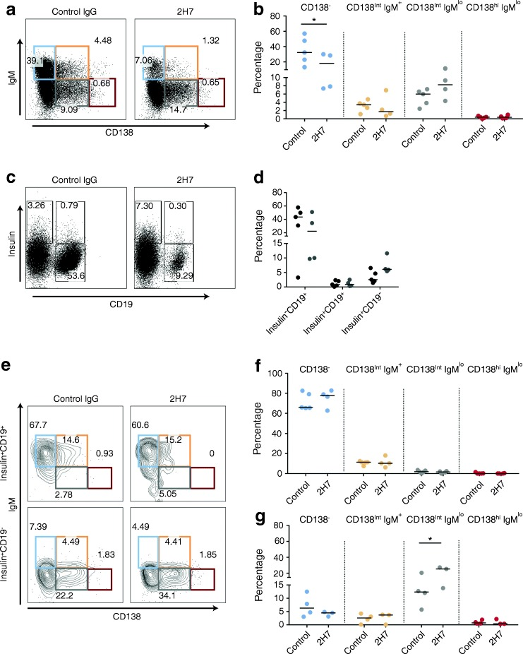 CD138 int anti-insulin B cells are enriched in pancreatic islets after anti-CD20 treatment. Groups of 6- to 8-week-old VH125.hCD20/NOD mice were injected with 2H7 anti-CD20 or IgG isotype control. Groups of mice ( n = 2 or 3 per group) were pooled and insulin + B cells from pancreatic islets were analysed for four different populations based on CD138 expression: CD138 − (blue); CD138 int IgM + (orange); CD138 int IgM lo (grey) and CD138 hi IgM lo (red). ( a , b ) Representative flow plots showing gating on live CD3 − CD11b − CD11c − ( a ) and graph showing the overall percentages of the four different populations ( b ). ( c , d ) Representative flow plots showing insulin − CD19 + , insulin + CD19 + and insulin + CD19 − cells ( c ) and graph showing the overall percentages of these cells ( d ); 2H7 (black circles), IgG (grey circles). ( e ) Representative flow plots showing CD138 and IgM expression in insulin + CD19 + and insulin + CD19 − cells. ( f , g ) Graphs showing CD138 and IgM populations on insulin + CD19 + ( f ) and insulin + CD19 − cells ( g ) ( n = 5 groups for control IgG treatment; n = 4 groups for 2H7 treatment). Horizontal lines represent the median values. Data represent two independent experiments. * p