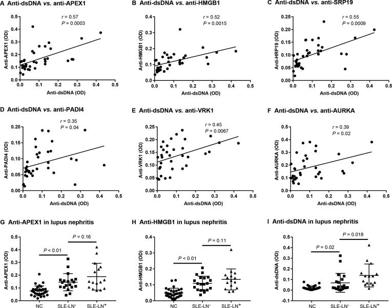 Correlation of autoAbs with <t>anti-dsDNA</t> and lupus nephritis The Pearson correlation coefficient of the 16 upregulated autoAbs with anti-dsDNA antibodies was analyzed by GraphPad Prism 6.0 with the levels of autoAbs measured using <t>ELISA</t> from the 35 SLE patients. Pearson's r represents the linear correlation between the levels of the selected autoAb and anti-dsDNA, where 1 means completely positive linear correlation, 0 means no linear correlation, and − 1 means completely negative linear correlation. Correlation with P