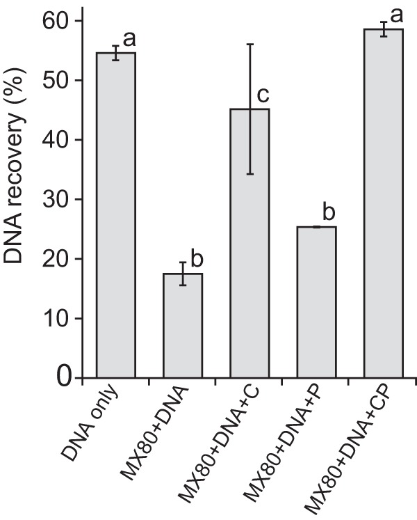 Effect of casein and phosphate (CP) on recovery of Escherichia coli strain W3110 genomic DNA (700 ng) from 50 mg (dry weight) MX-80 bentonite (1:6 slurry) using the PowerSoil DNA isolation kit (Mo Bio). Casein and phosphate were supplemented at 400 mg and 100 μmol per g MX-80 bentonite (dry weight), respectively. DNA was quantified using the <t>Qubit</t> <t>dsDNA</t> HS assay kit (Invitrogen). Error bars represent the standard deviations from duplicates. Different lowercase letters above bars indicate significant differences (Tukey's honestly significant difference [HSD], P