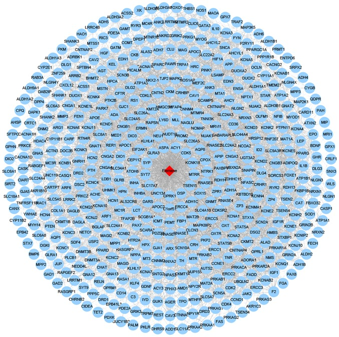 Network of β-elemene-target genes. Red diamond represents β-elemene; blue circles represent target genes of β-elemene.