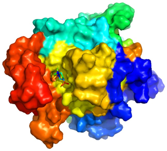 Molecular docking simulation of β-elemene to HIF1A. Sticks represent the three-dimensional structure of β-elemene; surface represents the protein structure of HIF1A. HIF1A, hypoxia-inducible factor 1-α.