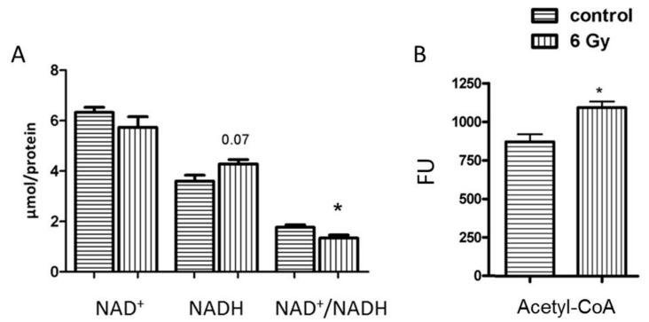 Analysis of the mitochondrial NAD + , NADH and NAD + /NADH and Acetyl-CoA. The concentration of NAD + , NADH and NAD + /NADH ( A ) and Acetyl-CoA ( B ) was compared in samples from irradiated and control groups. The error bars represent standard error of the mean (± SEM) (t-test; * p