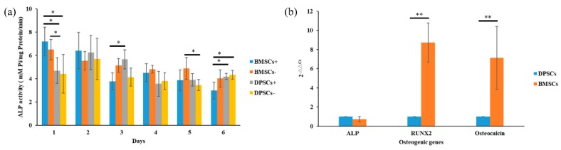 Comparison of ALP (alkaline phosphatase) activity and osteogenesis-related gene expression of BMSCs and DPSCs. ( a ) The expression of ALP activity of the BMSCs and DPSCs in differentiation media and regular culture medium was evaluated after 1, 2, 3, 4, 5 and 6 days of culture. ( b ) The relative osteogenic lineage gene expression levels (ALP, RUNX2 (runt related transcription factor 2), and Osteocalcin) of the BMSCs and DPSCs were assessed by qRT-PCR (* p