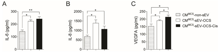 Secretion of interleukin-6 (IL-6), interleukin-8 (IL-8), and vascular endothelial growth factor A (VEGFA) from BM-MSCs after stimulation with sEV-OCS or sEV-OCS-Cis. ( A – C ) Secretion levels of ( A ) IL-6, ( B ) IL-8, and ( C ) VEGFA of BM-MSCs stimulated with sEV-OCS or sEV-OCS-Cis measured by multiplex fluorescent bead-based immunoassay analysis. BM-MSCs cell-cultured media (CM) was harvested 24 hours post-stimulation with sEV-OCS (CM MCS -sEV-OCS) or sEV-OCS-Cis (CM MCS -sEV-OCS-Cis). CM of BM-MSCs without sEV stimulation (CM MCS -non-sEV) was used as control. Results are mean ± SEM of n = 3. Statistical analysis was performed using the Kruskal–Wallis test followed by the Mann–Whitney test. * p