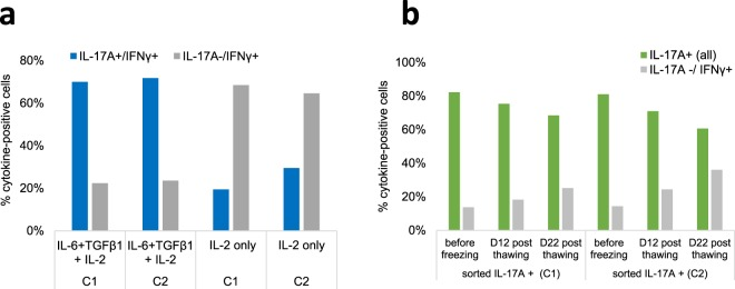 Maintenance of the IL-17A and IFN-γ phenotype of sorted and frozen-thawed cells upon subculture. ( a ) Sorted IL-17A+ cells stimulated with α-CD3/α-CD28 were cultured with IL-2 with or without the polarizing cytokines TGF-β1 and IL-6 for 9 days and analyzed by flow cytometry (ICS). Percentages of IL-17A+/IFN-γ+ double positive cells and of IL-17A-/IFN-g+ cells are shown. ( b ) Thawed IL-17A+ cells were cultured for 22 days and analyzed by ICS at days 12 and 22. Percentages of IL-17A+ cells (all: both IL-17A+/IFN-γ- and double positive cells) and IL-17A-/IFN-γ+ cells are shown. Results from two cows (C1 C2) are shown.