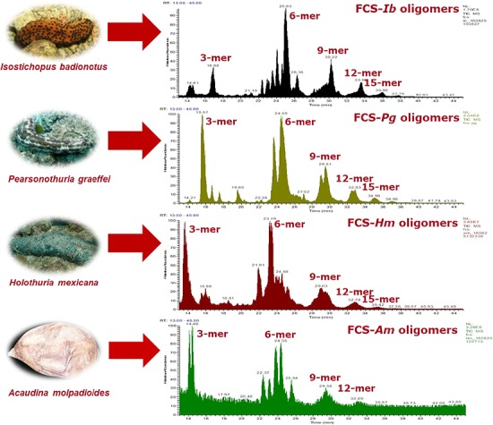 TICs of depolymerized FCS by partial N -deacetylation–deaminative cleavage from four species of sea cucumbers profiled by HILIC-FTMS.