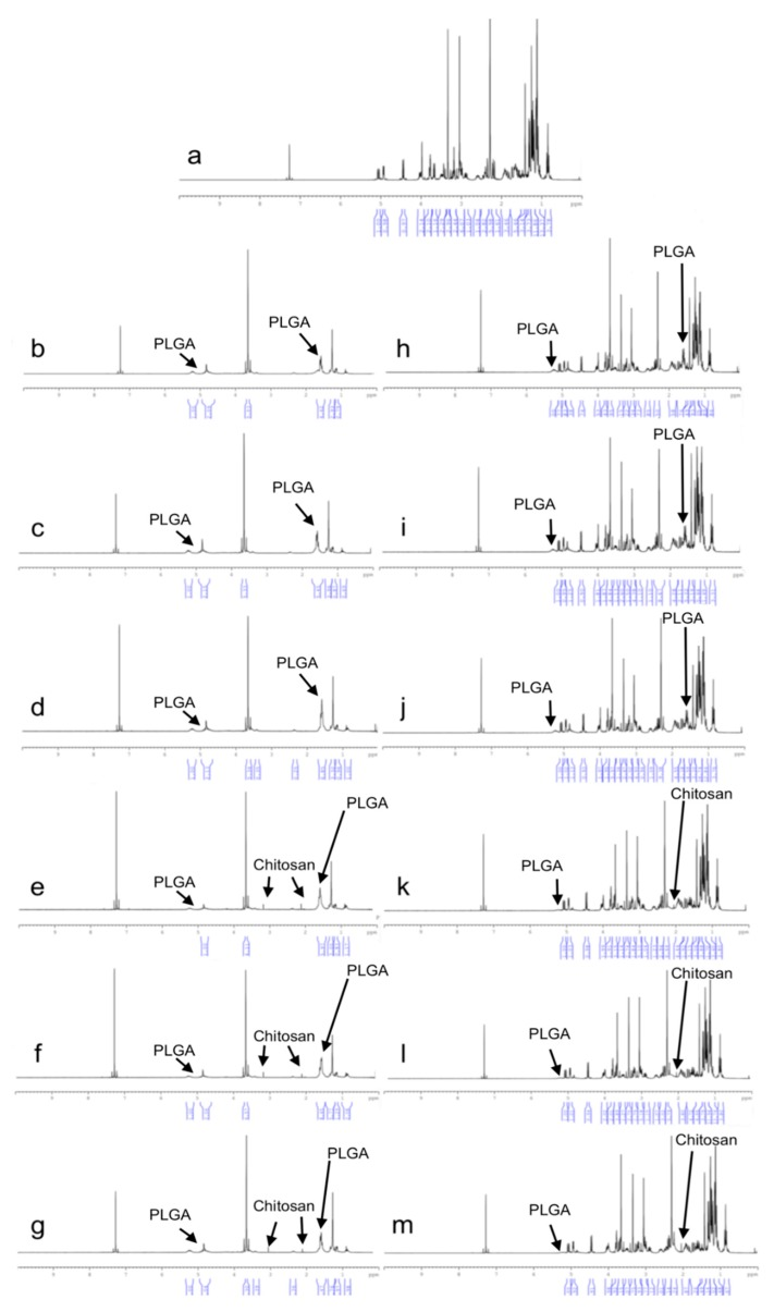 1 H-NMR spectrum of CLR and NPs, ( a ) CLR, ( b ) 502H-Blank, ( c ) 503H-Blank, ( d ) 504H-Blank, ( e ) CS-502H-Blank, ( f ) CS-503H-Blank, ( g ) CS-504H-Blank, ( h ) 502H, ( i ) 503H, ( j ) 504H, ( k ) CS-502H, ( l ) CS-503H, ( m ) CS-504H.