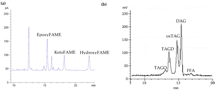 ( a ) Sample gas chromatograph (GC) chromatogram for the determination of epoxy, keto, and hydroxy acids and ( b ) sample high performance size exclusion chromatography (HPSEC) chromatogram for the determination of polar fraction distribution (TAGO: Triacylglycerol oligomer; TAGD: Triacylglycerol dimer; oxTAG: Monomeric oxidized triacylglycerol; DAG: Diacylglycerol; and FFA: Free fatty acids).