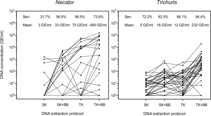 The sensitivity and DNA concentration across four DNA extraction protocols for Trichuris and Necator . The left panel represents the sensitivity (sen) and geometric mean of DNA concentration expressed as genome equivalents per ml of DNA extract (mean; GE/ml) for 20 Necator americanus samples preserved in 96% ethanol and extracted by four DNA extraction protocols. The DNA extraction protocols include the QIAamp DNA Stool Mini kit without (SK) and with bead beating (SK + BB), DNeasy Blood Tissue kit without (TK) and without bead beating (TK + BB). The right panel represents the same parameters across 36 Trichuris trichiura samples preserved in 96% ethanol. Each line represents a sample.