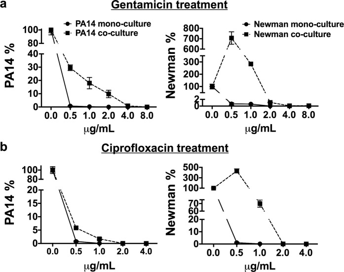 P. aeruginosa PA14 and S. aureus Newman coculture biofilms induce enhanced tolerance to antibiotic treatment compared to monoculture biofilms. After 48 h, matured mono- and cocultured PA14 and Newman biofilms grown in microtiter plates were treated with 0.5, 1.0, 2.0, 4.0 and 8.0 μg/mL gentamicin ( a ) and 0.5, 1.0, 2.0, and 4.0 μg/mL ciprofloxacin ( b ) for 15 h. Symbols in the plots represent the remaining percentage of CFUs of each strain in the biofilm after different antibiotic treatments compared to the relative untreated biofilm. Each graph shows the percentages of PA14 and Newman CFUs compared according to whether the biofilms were grown in mono- or coculture. Percentages were calculated according to the bacterial CFUs counted on selective agar plates after different antimicrobial treatments (Supplementary Table S3 ). Analysis of the statistical significance between the calculated percentages of bacterial CFUs that remained in the cocultured biofilm (after each antibiotic treatment) and those calculated in the monocultured biofilms revealed significance with p