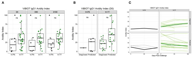Vi polysaccharide IgG1 avidity higher in protected individuals. ViBIOT IgG1 avidity index at pH 3.0 in positive vaccine responders by vaccine group over time (A) and by diagnosed/protected outcome at day of challenge (B) . Avidity index in positive vaccine responses of anti-ViBIOT IgG1 over time (C) from 4 weeks post-vaccination (D0) to 6 months post-challenge (D180) by vaccine group and protection status. Bolded lines indicate median avidity index and faint lines indicate individual level data. Data points are representative of n = 2 independent experiments (each with n = 2 technical replicates). nt indicates not tested for statistical significance.
