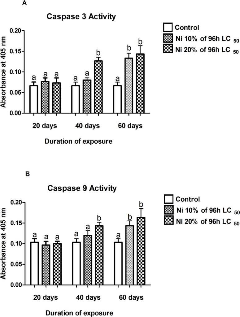 Nickel exposure induced variation of <t>caspase-3</t> (A) and caspase-9 (B) activities in piscine brain exposed to 0% (0.00 mg L -1 ), 10% (4.1 mg L -1 ) and 20% (8.2 mg L -1 ) of 96 h LC 50 of Ni at 20, 40 and 60 days of exposure. Data are mean ± SE of eight observations. Results of DMR Test have been represented by small letters. Common letter between any two bars indicates their similarity while two different letters indicate significant difference at 5% level.