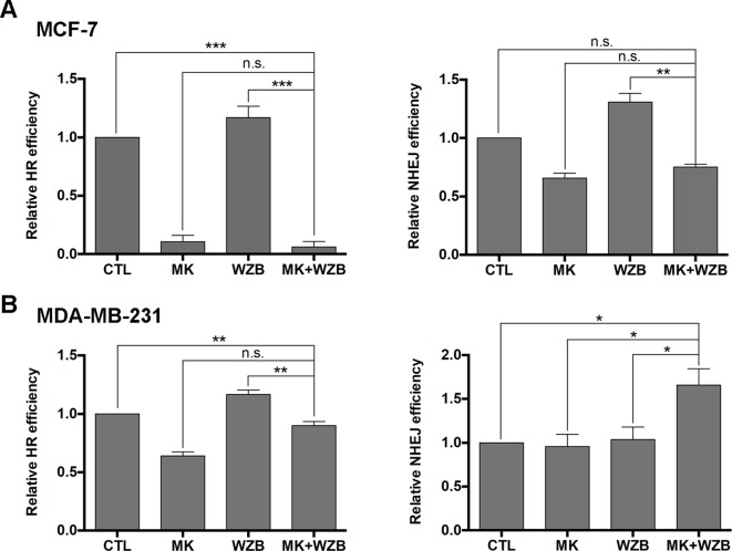 The MK-2206 and WZB117 combination affects DNA repair via HR and NHEJ. (A) HR and NHEJ assays in MCF-7 cells. (B) HR and NHEJ assays in MDA-MB-231 cells. For drug treatment, MCF-7 cells were treated with 6 µM MK-2206 and/or 60 µM WZB117 and MDA-MB-231 cells were treated with 12 µM MK-2206 and/or 60 µM WZB117 for 24 h. Data are presented as the mean ± SEM of three independent experiments, except NHEJ assay in MCF-7 cells ( N = 2).*P
