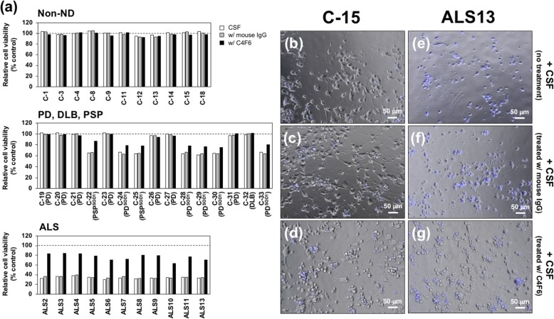 Toxicity of CSF samples from sALS toward motor neuronal cell line comes from misfolded SOD1. ( a ) Differentiated NSC-34 cells were exposed to (white bars) the CSF samples, (gray bars) the CSF samples preabsorbed with normal mouse <t>IgG,</t> and (black bars) the CSF samples preabsorbed with mouse monoclonal <t>C4F6</t> antibody for 48 h, and the cell viability was assayed with Cell Counting Kit-8. Each of the CSF samples was tested in duplicate, and the data are shown as the averaged cell viability relative to that of the negative control, in which PBS instead of CSF samples was exposed to the cells. ( b - g ) Representative images of the differentiated NSC-34 cells exposed to the CSF samples from ( b - d ) non-ND (C-15) and ( e - g ) sALS (ALS13) are shown. The cells were incubated with ( b , e ) the CSF samples, ( c , f ) the CSF samples preabsorbed with mouse IgG, and ( d , g ) the CSF samples preabsorbed with mouse monoclonal C4F6 antibody. The dying cells were stained with DAPI (shown in blue)