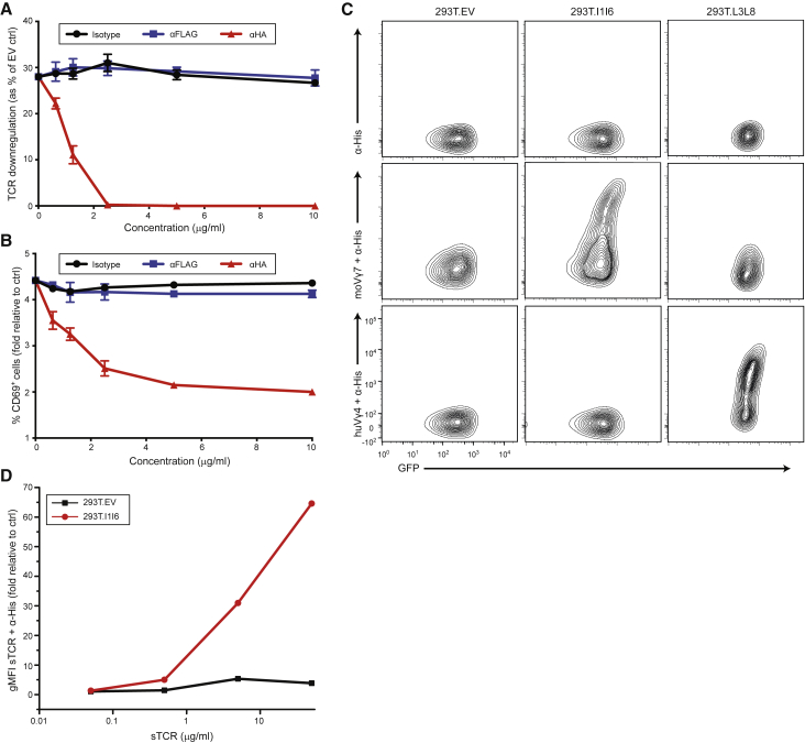 Mouse Vγ7 TCR-Dependent Recognition of Btnl1.6 (A and B) Flow cytometry analysis of TCR downregulation (A) and CD69 upregulation (B) by Jurkat 76 cells transduced with mo5 Vγ7Vδ2-2 TCR and co-cultured for 5 h with MODE-K.FLAG-l1.HA-l6 cells in the presence of the indicated concentrations of antibodies (x axis). Results were normalized to those obtained by co-culture with transduced MODE-K.EV cells. Data are representative of three independent experiments (mean ± SD of n = 3 co-cultures). (C) Specific staining of anti-His antibody alone (top row), soluble Vγ7 + TCR and anti-His mAb (middle row), or Vγ4 + TCR and anti-His mAb (bottom row) to 293T cells expressing Btnl1.6, BTNL3.8, or control 293T.EV. (D) Flow cytometry analysis of the staining of Btnl1.6-expressing 293T cells with increasing concentrations of soluble Vγ7 + TCR and anti-His mAb. See also Figure S2 .