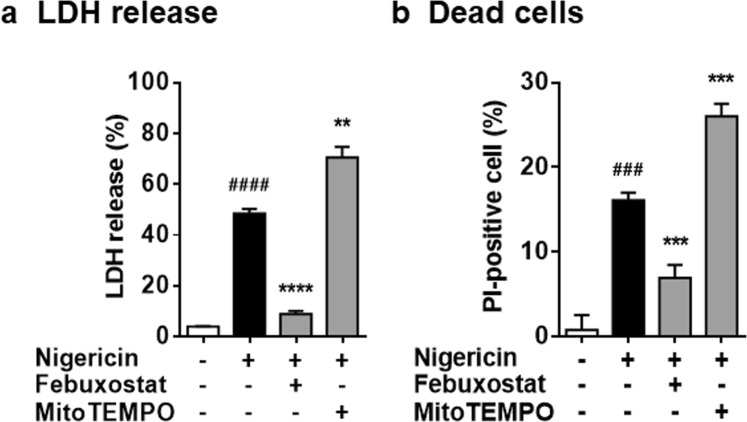 Febuxostat inhibits cell death in mitochondrial ROS-independent manner. ( a ) Primed BMDMs were pretreated 30 min with vehicle, febuxostat or MitoTEMPO, and then stimulated 2 h with nigericin. LDH activity in the supernatant was measured. ( b ) Primed BMDMs were pretreated 30 min with vehicle, febuxostat or MitoTEMPO, and then stimulated 6 h with nigericin. After stimulation, cells were stained with calcein for living cell and PI for dead cell. Data are representative of three independent experiments performed in triplicate and shown as mean ± SD. ### p
