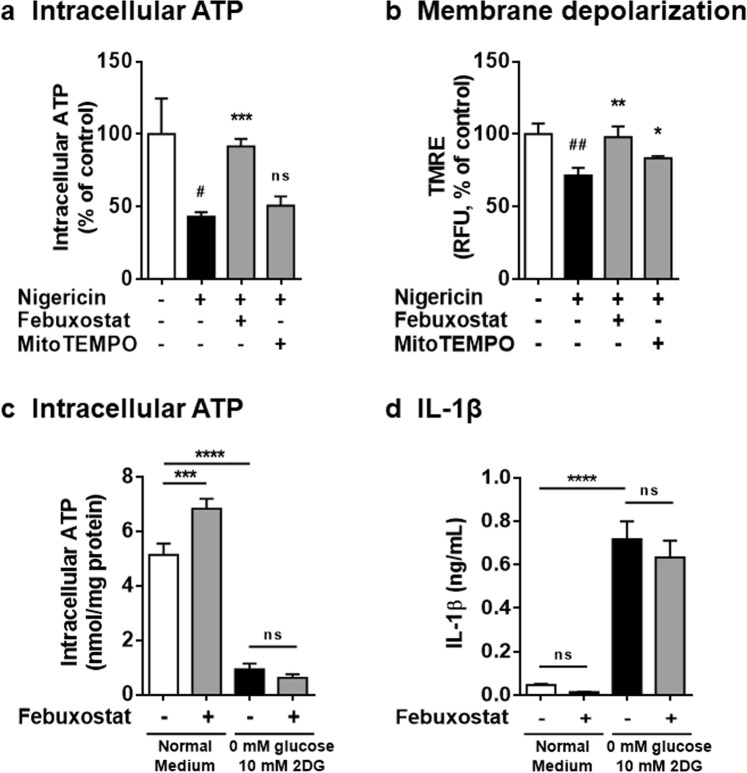 Restored intracellular ATP is involved in the inhibitory effects of febuxostat. ( a ) Primed BMDMs were pretreated 30 min with vehicle, febuxostat or MitoTEMPO, and then stimulated 2 h with nigericin. Intracellular ATP was measured by luminescence method. ( b ) Primed BMDMs were pretreated 30 min with vehicle, febuxostat or MitoTEMPO, and then stimulated 90 min with nigericin. After stimulation, cells were loaded with TMRE. Data are representative of three independent experiments performed in triplicate and shown as mean ± SD. # p