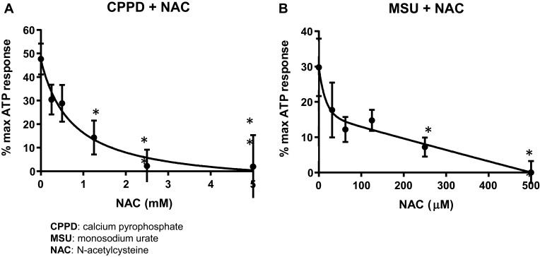 NAC inhibits caspase-1 activation in cells treated with CPPD or MSU. Urothelial cells were incubated overnight and then treated with decreasing concentrations of NAC for 1 hr before treatment with 62.5 μg/mL CPPD ( A ) or 1.25 μg/mL MSU ( B ) for 24 hrs. The caspase-1 assay was then performed as described in the Materials and Methods section. CPPD-treated cells had a higher IC 50 (625 μM) versus MSU-treated cells (IC 50 = 31.25 μM). n=9 for all NAC treatment doses for both CPPD and MSU. *p