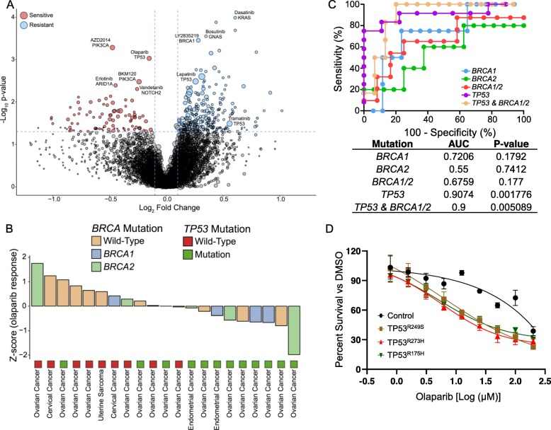 Predictive biomarkers for response to PARP inhibitors. a Volcano plot representation of gene-drug interactions in gynecologic tumors. b Waterfall plot enumerating individual tumor response to olaparib with BRCA1/2 and TP53 mutation status. c Receiver operating characteristic curve plotted for the sensitivity versus 100 - specificity values for predicting olaparib response rates using BRCA1/2 and TP53 mutation status. d Drug response assessment of olaparib on OVISE cell-line that has been stably transduced with/without TP53 - R249S , T273H , or R175H mutation. Dose response curves were generated using percent survival of cells under olaparib treatment for 4 days on 9 different doses from 200 to 0.78 μM. P values in a —two-sided Wilcoxon's rank-sum test, and in c —two-sided binomial exact test