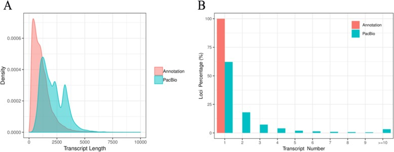 Isoform length density and Isoform number of loci density. a The length distribution of all isoforms in the PacBio Sequel platform compared to the reference genome. b The number distribution of isoforms from each locus in the PacBio Sequel platform compared to the reference genome