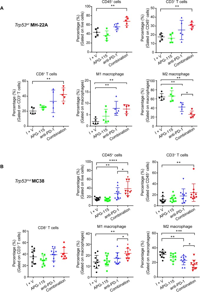 Flow cytometry analysis of TILs in the TME of syngeneic tumors with wild-type ( a ) or mutant ( b ) Trp53 . Mice with established MH-22A or MC38 tumors were treated with 10 mg/kg APG-115 ( a and b ), 10 mg/kg ( a ) or 5 mg/kg ( b ) anti-PD-1 antibody, or the combination as described in the legend of Fig. 4 . The control group was treated with isotype control antibody and APG-115 vehicle (I + V). On day 14, syngeneic tumors were harvested, dissociated into single-cell suspensions, and stained for flow cytometry analysis. Percentages of CD45 + , CD3 + T cells, CD8 + T cells, M1 and M2 macrophages in the tumors under the different treatments were assessed. Data were representative of two ( a ) or three ( b ) independent experiments and shown as dot plots ( n = 5 or 10). **** P