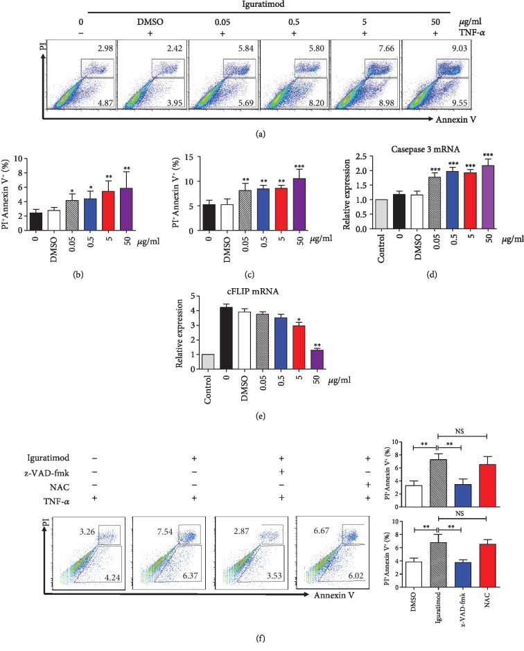Iguratimod promoted apoptosis of RA-FLSs. (a) RA-FLSs were treated with TNF- α (25 ng/ml) and different concentrations of iguratimod for 24 h. Propidium iodide (PI) and Annexin V (AV) staining were determined by flow cytometry. Typical flow plots were shown. (b, c) The summary data of early apoptotic cells (PI − AV + ) and late apoptotic or dead cells (PI + AV + ) were shown. The data were described as the mean ± SD for three independent experiments (totally 8 RA-FLSs lines). (d, e) Caspase 3 and cFLIP mRNA expression were measured by qPCR in RA-FLSs. (f) For inhibitor experiments, cells were pretreated with the pan-caspase inhibitor z-VAD-fmk (Sigma-Aldrich, 10 μ M) or N-acetyl-l-cysteine (NAC, Sigma-Aldrich, 5 mM) for 1 h before the treatment of iguratimod. RA-FLSs were treated with TNF- α (25 ng/ml) and iguratimod (0.5 μ g/ml) for 24 h. Apoptosis was determined by flow cytometry. Typical flow plots were shown. The data were shown as the mean ± SD for three independent experiments. The data were analyzed using one-way ANOVA followed by Turkey's test. ∗ P