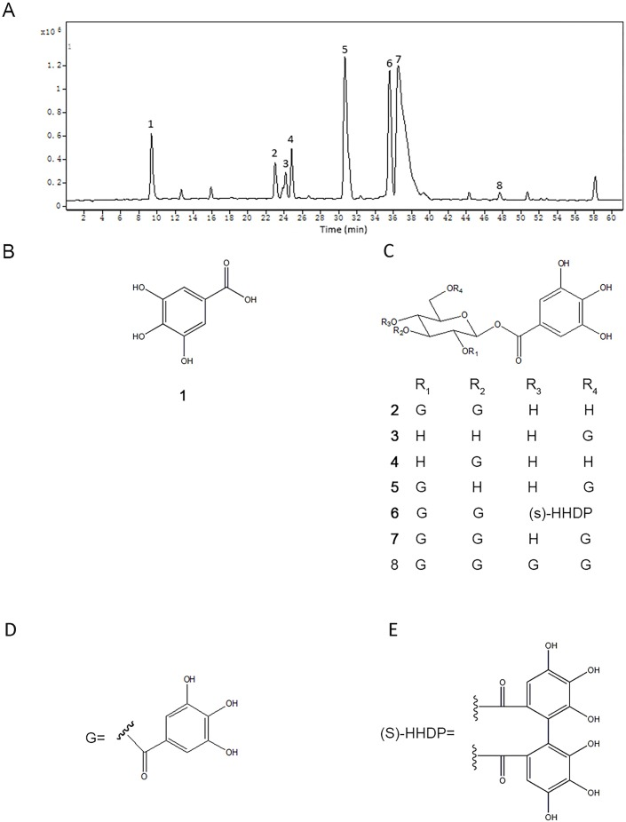 The chromatogram of TQPE analyzed by <t>HPLC-QTOF</t> (A) and the structures of eight dominated polyphenols in TQPE (B–E).