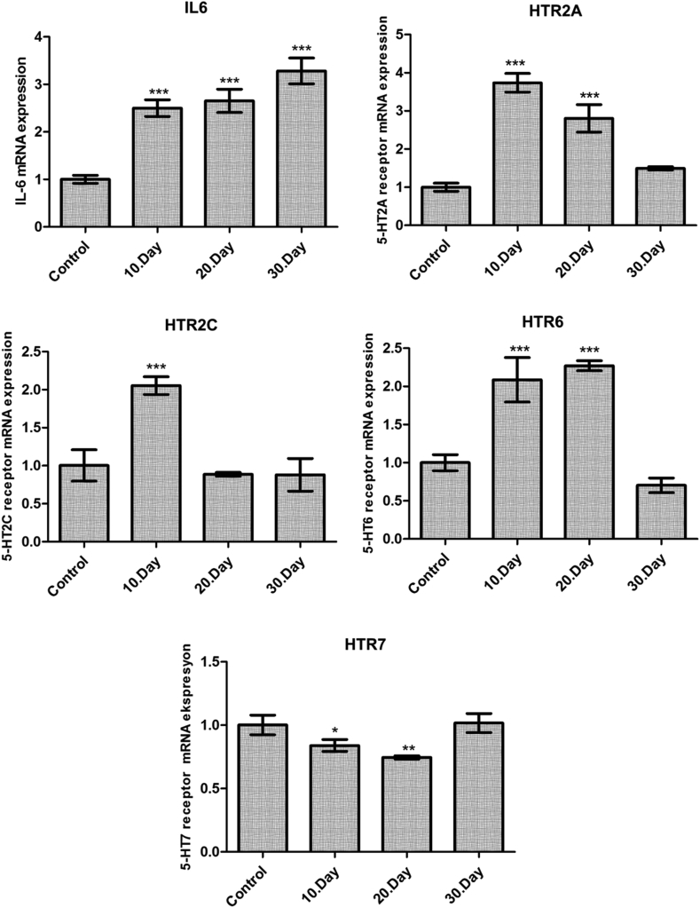 Relative mRNA expression level of IL-6, serotonin 2A receptor (5-HTR2A), serotonin 2C receptor (5-HTR2C), serotonin 6 receptor (5-HTR6) and serotonin 7 receptor (5-HTR7) in the brains of healthy or T. gondii -infected mice. Gene expression was detected by quantitative real-time PCR. β-Actin was used as a reference gene. The gene-specific primers are listed in the Material and Methods. The relative expression levels were calculated by the 2 (-ΔΔCT) method. Statistical analysis was performed using a one-way analysis of variance and Tukey's multiple comparison test. The values represent means ± S.D. ***p