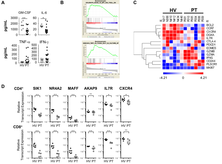 ( A ) Cytokine secretion detected at 24 hours with T cells (patients [PT], n = 9) engineered to express a <t>mesothelin-specific</t> <t>CAR</t> and stimulated with mesothelin-expressing K562 cells. ( B ) Gene set enrichment analysis of T-cell effector signaling genes in peripheral blood CD8 + T cells isolated from patients ( n = 6) compared with healthy volunteers (HV) ( n = 6). ( C ) Heat map of genes expressed by CD3 + CD8 + T cells. ( D ) Messenger <t>RNA</t> levels of genes associated with differentiation, signaling, homing, and survival detected in sorted peripheral blood T cells as indicated. GM-CSF, granulocyte-macrophage–colony-stimulating factor. ∗ P