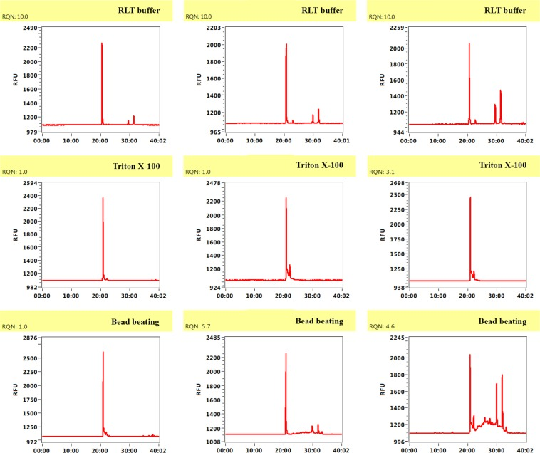 <t>RNA</t> integrity of some RNA samples after enrichment with buffer <t>RLT,</t> Triton X-100 and bead beating. Electropherogram profiles were determined with a Fragment Analyzer. Quality for Fragment Analyzer is shown as the RQN value. Reported on a scale of 1 to 10, with higher values indicating a better quality of total RNA. Values above 7 are considered to represent high quality and non-degraded RNA.