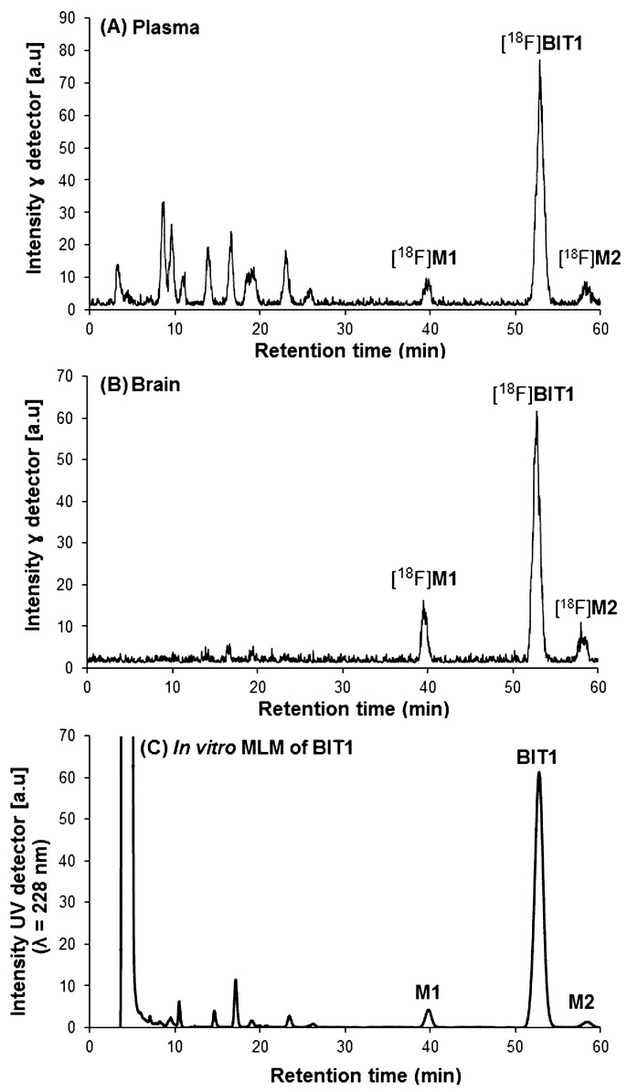 Representative analytical HPLC chromatogram: ( A ) plasma and ( B ) brain samples at 30 min p.i of [ 18 F] BIT1 in a CD-1 mouse; ( C ) sample from incubation of BIT1 with mouse liver microsomes (MLM) in the presence of NADPH for 90 min at 37 °C (UV detection: 228 nm; axis of retention time was adjusted). Conditions: isocratic system, column: <t>Reprosil-Pur</t> <t>C18-AQ,</t> 250 × 4.6 mm; eluent: 42% MeCN in 20 mM NH 4 OAc aq. , flow: 1.0 mL/min.