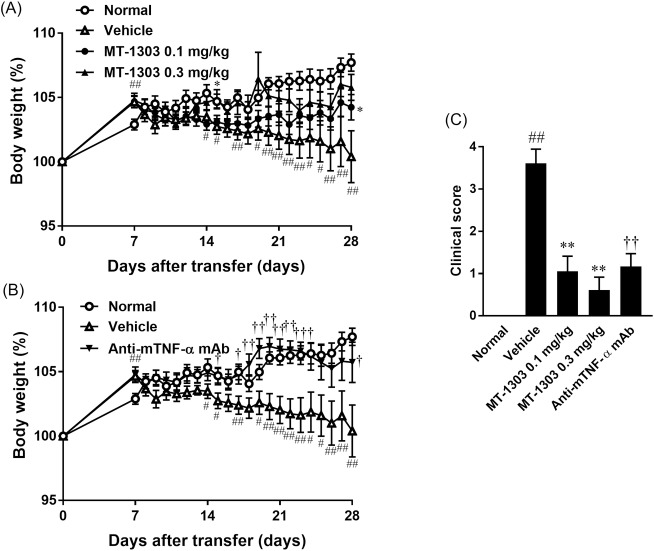 Effects of MT-1303 and an anti-mTNF-α mAb on colitis in SCID mice induced by adoptive transfer of CD4 + CD45RB high T cells. SCID mice were injected with CD4 + CD45RB high T cells to induce colitis. MT-1303 was orally administered to SCID mice every day from day 7 after CD4 + CD45RB high T cell transfer for 21 days, and anti-mTNF-α mAb was intraperitoneally administered to SCID mice on day 7 and day 21 after cell transfer. (A, B) Change in body weight over time. Body weight on each day is expressed as a percentage of the original weight. Each symbol represents the mean ± S.E.M. of body weight (%) in 18 mice. Statistical differences were determined using Student's t -test by comparing with the normal group (# p