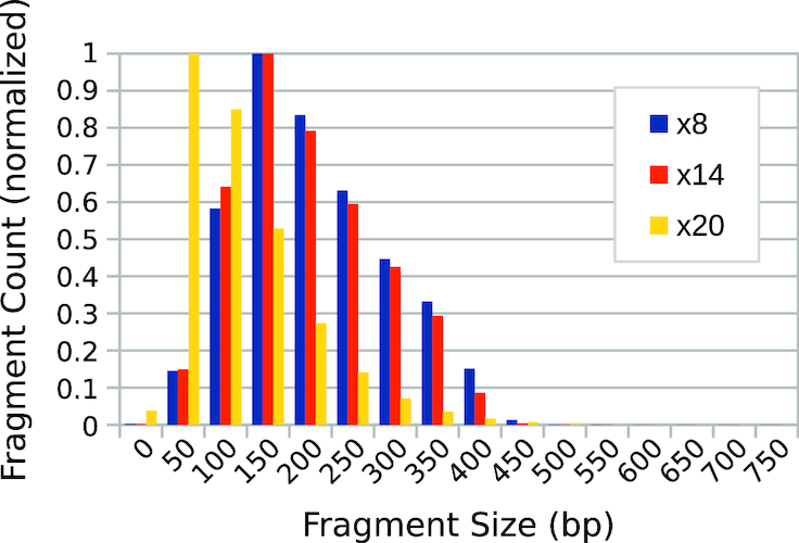 Fragment-library size distributions obtained from bioinformatic analysis of MiSeq sequencing output. A tagmented sample of phage λ genomic DNA was subjected to 8, 14 and 20 cycles of PCR amplification, respectively. The fragment counts in each bin are normalized with respect to the maximum value in each distribution.
