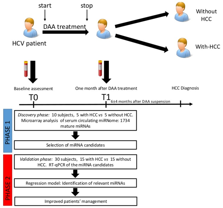 General scheme of the miRNA profiling study design. In the discovery phase 10 patients were enrolled and analyzed through a <t>Genechip</t> miRNA 3.0 array. Patients were divided into two groups, with-HCC (subjects developing HCC after DAA treatment) and without-HCC (subjects not developing HCC after DAA treatment). Samples were analyzed at T0 and T1. Subsequently, miRNA candidates were assessed by qRT-PCR in 30 patients (validation cohort). MiRNA biomarkers were selected by estimating the time-averaged difference of a given miRNA between subjects with HCC vs. without HCC using a bootstrapped random-effect generalized least square regression model (RE-GLS).