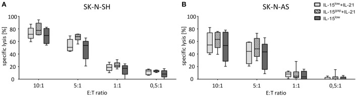 Cytotoxic potential of IL-15+IL-21 stimulated CD3/CD19-depleted NK cells against NB target cells. Specific lysis of the NB cell lines SK-N-SH (A) and SK-N-AS (B) was evaluated by Europium release assay. Both NB cell lines were efficiently lysed by CD3/CD19-depleted NK cells. Median target cell lysis of NK cells treated in the IL-15 low protocol ( ) was 69. Five percent for SK-N-SH and 53.5% for SK-N-AS cells (E:T ratio 10:1). An additional IL-21 boost elevated cytotoxic activity of IL15-stimulated NK cells to a median cell lysis of 71.5% (IL-15 low + IL-21 ) and 77.6% (IL-15 gap +IL-21 ) for SK-N-SH and 54.4% (IL-15 low +IL-21) and 63.3% (IL-15 gap +IL-21) for SK-N-AS cells (all E:T ratio 10:1) (statistically not significant differences). Effector to target (E:T) ratios 10:1, 5:1, 1:1, and 0.5:1, n = 5–6 independent results, experiments performed in triplicate, incubation time: 3 h, box-and-whisker plots show median, 25th−75th percentiles, Min-Max.
