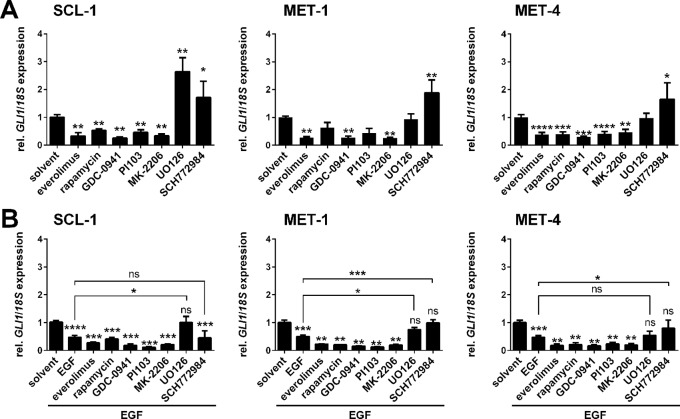 Effects of EGF and/or PI3K, AKT, mTOR, or MEK1/2 inhibition on GLI1 expression level in human cSCC cell lines. qRT-PCR-based analysis of GLI1 expression levels of SCL-1, MET-1 and MET-4 cells (A) after 24 h treatment with 50 nM everolimus, 100 nM rapamycin, 3 µM PI103, 10 µM GDC-0941, 5 µM MK-2206, 20 µM UO126, or 100 nM SCH772984 and (B) after 24 h treatment with the mentioned drugs and concomitant 3 h incubation with 100 ng/µl EGF. GLI1 expression levels were normalized to 18S rRNA gene expression and values of solvent treated controls were set to 1. Results represent mean values + SEM of three independent experiments measured in triplicates. Statistical significance was tested by a nonparametric Mann-Whitney test. * P