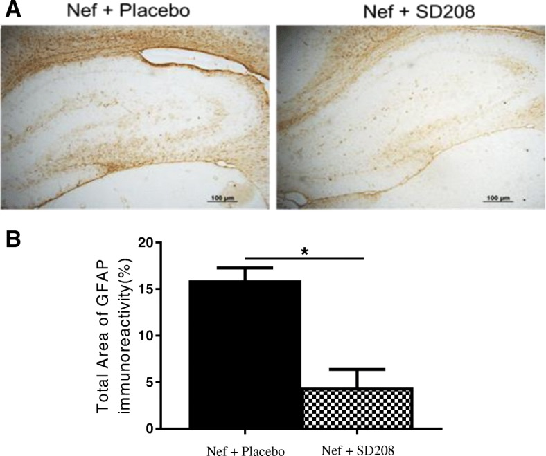 Blocking TGFβR1 with <t>SD208</t> decreases GFAP expression in rats infused with astrocytes expressing Nef. a Representative tissue sections immunostained for astrocyte activation marker, GFAP. Nef+placebo (left panel), n = 5, and Nef+SD208 (right panel), n = 3. b Densitometric analysis was used to quantify the intensity of GFAP staining, * p
