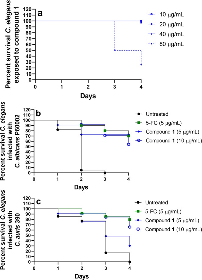 Toxicity of compound 1 and efficacy of compound 1 and 5-Fluorocytosine in C . elegans infected with C . albicans or C . auris . ( a ) Adult (L4-stage) worms were exposed to compound 1 at four different concentrations and viability was recorded daily for four days. Adult (L4-stage) worms were infected with the highly-virulent, fluconazole-resistant strains ( b ) C . albicans P60002 or ( c ) C . auris strain 390 for 90 minutes at 25 °C. Worms were washed and then treated with compound 1 (either at 5 µg/mL or 10 µg/mL), 5-Fluorocytosine (5-FC, 5 µg/mL) or left untreated. Survival of worms was monitored daily and recorded. Data are presented as a Kaplan-Meier survival curve.