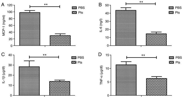 Pts decreases the inflammatory response in an atherosclerosis rat model. Inflammatory cytokines (A) MCP-1, (B) IL-6, (C) IL-1β and (D) TNF-α in serum samples of Pts and PBS groups of rat models of atherosclerosis. **P