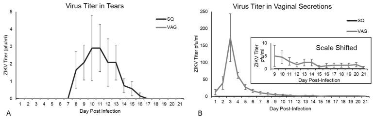 Viral shedding in guinea pigs inoculated subcutaneous (SQ) and intravaginal (VAG) with 1x10 6 PFU ZIKV MR766. Virus titer, determined by plaque assay on Vero E6 cells, detected in: ( A ) tears; ( B ) vaginal secretions. Inset shows the graph with the Y-axis shifted to show average titer in vaginal secretions through 21 dpi in VAG infected animals.