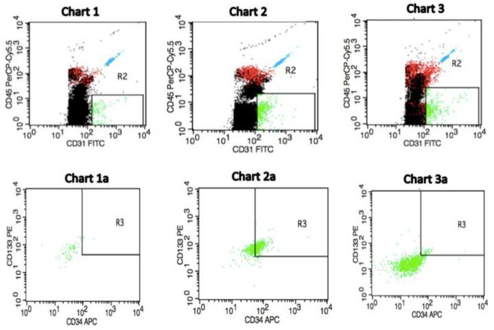 Sample of selected flow cytometric plots for identification of circulating endothelial progenitor cells depending on pre-treatment counts in invasive breast cancer cases and in a healthy individual. Charts 1 and 1a demonstrate a profile of a subject free of breast cancer (control) with circulating endothelial progenitor cells (EPCs) count of 0.30 cells/µL. Charts 2 and 2a show an invasive breast cancer (IBrC) patient with T1a, N0, M0, grade = 2, tumour diameter = 0.5 cm, ER/PR+ and HER2-Ki-67 = 15%, a baseline number of circulating EPCs was 37.99 cells/µL. A patient after 40 months of follow-up is still alive. Charts 3 and 3a demonstrate an IBrC subject with T2, N0, M0, grade = 3, tumour diameter = 2.5 cm, ER+, PR−, HER2−; Ki-67 = 45%, a pre-treatment number of circulating EPCs was 4.32 cells/µL. A patient passed away due to lung, liver, and bones metastases. Quantification of circulating EPCs was made in a peripheral blood mononuclear cell (PBMC) fraction. A gating strategy for the identification of circulating EPCs by applying CD45-PerCP-Cy5.5, CD31-FITC (R2: CD45–/CD31+ gating to exclude lymphocytes), <t>CD34-APC,</t> and CD133-PE (R3: CD133+/CD34+ gating identifies endothelial progenitor cells) conjugated antibodies was used. The CD45 population was gated on the overall lymphocyte + monocyte cells in the PBMC. A detailed flow cytometry plots presentation was published in our previous study [ 9 ].