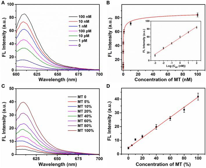 (A) The fluorescence spectra of P (1 μM) in the presence of different concentrations of mutant-type target (0, 0.001, 0.01, 0.1, 1, 10, and 100 nM) and Exo III (0.25 U μl −1 ) with addition of Ta 2 NiS 5 nanosheets (5.0 μg ml −1 ). (B) Relationship between fluorescence intensity at 610 nm and the concentrations of mutant-type target. Inset: Calibration curve for detection of mutant-type target. (C) Fluorescence spectra of different percentage of mutant-type target in mixed DNA samples (MT/(MT + WT) was 0, 5, 10, 20, 40, 60, 80, and 100%). (D) Fluorescence intensity at 610 nm as a function of allele frequency. The total concentration of the mutant and wild-type target is 100 pM. The excitation wavelength is 590 nm.