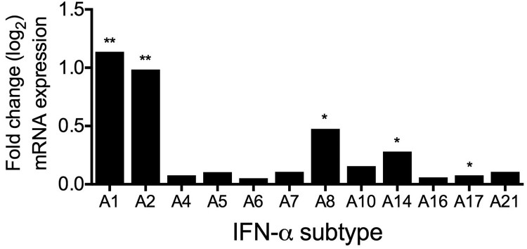 Induction of IFN-α subtypes mRNA levels by H3N2 IAV infection in human lung explants. Total RNA was isolated 24 hpi for RNA-sequencing. mRNA levels are depicted as mean log 2 fold change, compared to mock-infected tissue from the same donor. n = 5 independent donors. * p