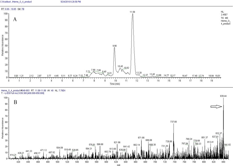Identification of heme O by LC-MS/MS in schizonts extracts. Heme O was separated using <t>C18</t> Vac columns and eluted with DMSO and analyzed by LC-MS / MS. ( A ) Heme O separation was performed using a <t>Hypersil</t> Gold C18 Column (see material and methods: Mass Spectrometry; LC-MS/MS) and the peak with retention time of 11.58 was analyzed by MS/MS. ( B) MS/MS of peak of 11.58 showing the m/z of heme O (arrow, 839.4, compatible with its calculated mass).