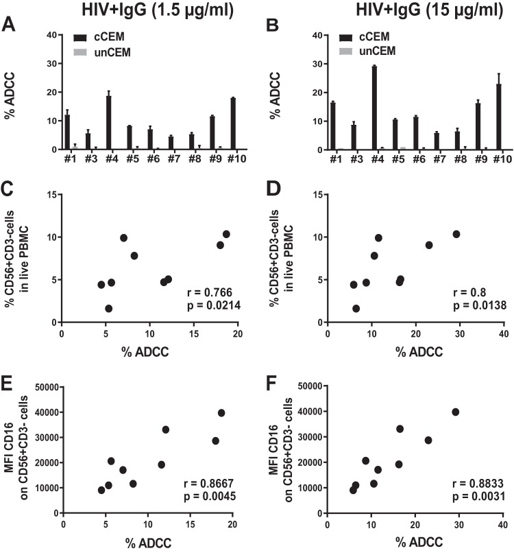 ADCC activity of effector PBMCs depends on the frequency of NK cells and CD16 levels on NK cells. Frequencies of NK cells (defined as live CD56 + CD3 − ) and levels of CD16 mean fluorescence intensity (MFI) on NK cells were evaluated in PBMCs from 9 HIV − donors tested in parallel for their capacity to mediate ADCC of coated CEM cells (cCEM) and uncoated CEM (unCEM) cells opsonized with HIV + IgG (as described for Fig. 1 ). (A nd B) Between-subject variation in the frequency of AnV + (% ADCC) cCEM (black bars) and unCEM (gray bars) cells generated in the ADCC-AnV assay using PBMCs and 1.5 μg/ml (A) or 15 μg/ml (B) of HIV + IgG to opsonize target cells. Data represent results from one experiment representative of three. Error bars indicate the standard deviations (SD) of results from replicates for each donor tested. (C and D) Spearman correlation between the frequency of NK cells present in live PBMC (% CD56 + CD3 − cells in live PBMC) and the frequency of AnV + (% ADCC) cCEM cells opsonized with 1.5 μg/ml (C) or 15 μg/ml (D) of HIV + IgG. (E and F) Spearman correlation between the MFI of CD16 expression on NK cells (MFI CD16 on CD56 + CD3 − cells) and the frequency of AnV + (% ADCC) cCEM cells opsonized with 1.5 μg/ml (E) or 15 μg/ml (F) of HIV + IgG.